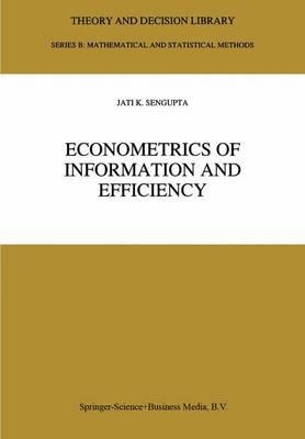 Econometrics of Information and Efficiency by Jati Sengupta