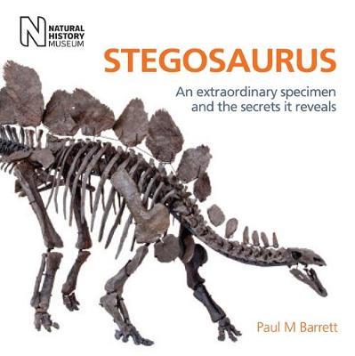 Stegosaurus by Paul M. Barrett