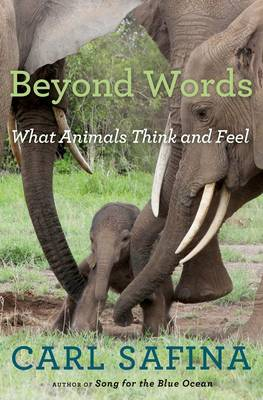 Beyond Words by Carl Safina