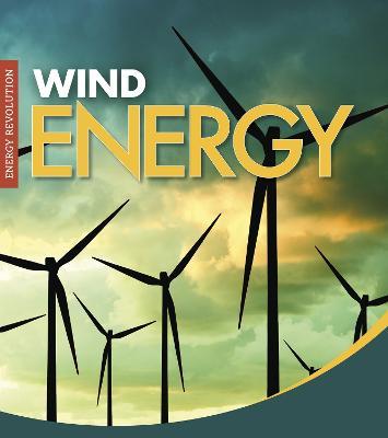 Wind Energy book