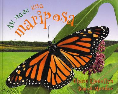 As Nace]] Una Mariposa by Claire Llewellyn