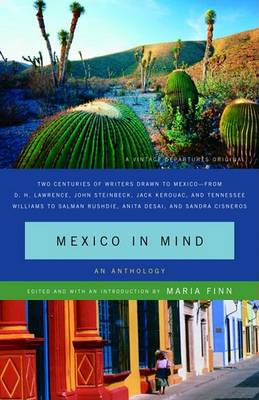 Mexico in Mind by Maria Finn Dominguez