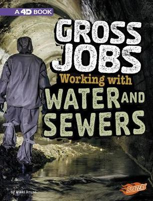 Working with Water and Sewers: 4D An Augmented Reading Experience book