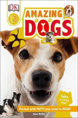 Amazing Dogs book