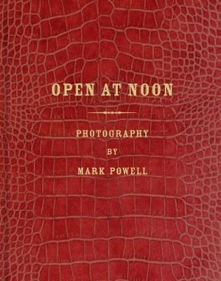 Open at Noon: Mark Alor Powell by Mark Powell