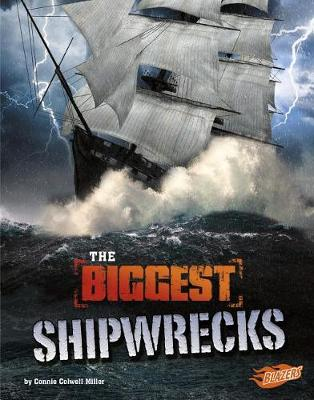 The Biggest Shipwrecks by Connie Rose Miller