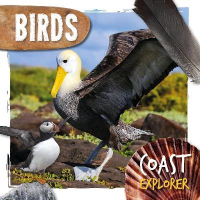 Birds by Robin Twiddy