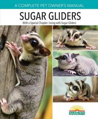 Sugar Gliders by Caroline MacPherson