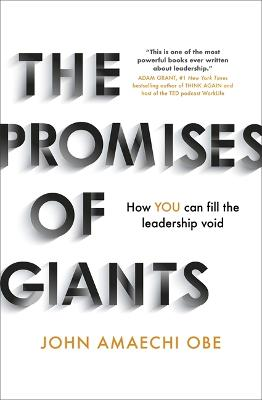 The Promises of Giants: How YOU can fill the leadership void book