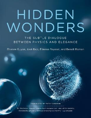 Hidden Wonders: The Subtle Dialogue Between Physics and Elegance by Etienne Guyon