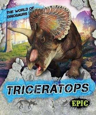 Triceratops by Rebecca Sabelko