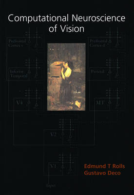 Computational Neuroscience of Vision book