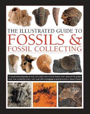 Fossils & Fossil Collecting, The Illustrated Guide to: A reference guide to over 375 plant and animal fossils from around the globe and how to identify them, with over 950 photographs and artworks by Steve Parker