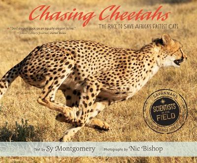 Chasing Cheetahs by Sy Montgomery