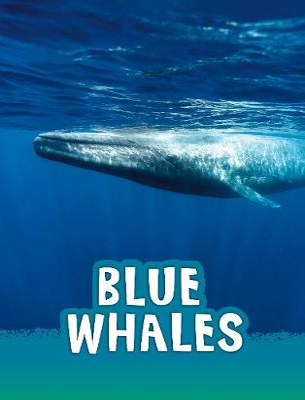 Blue Whales by Mari Schuh