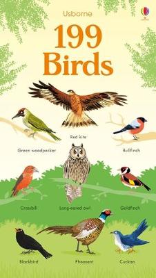 199 Birds by Hannah Watson