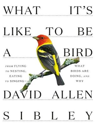 What It's Like to be a Bird book