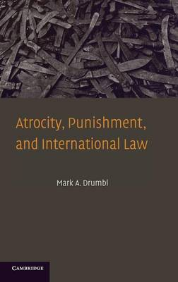 Atrocity, Punishment, and International Law book