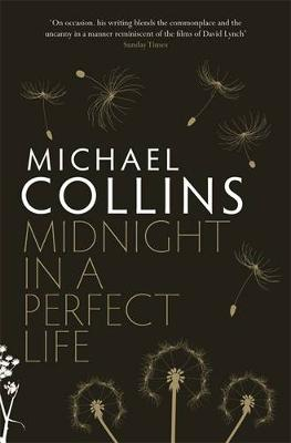 Midnight in a Perfect Life book