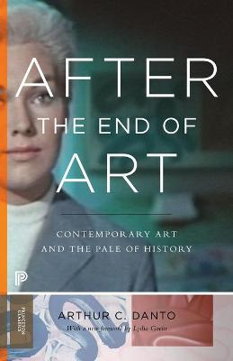 After the End of Art book