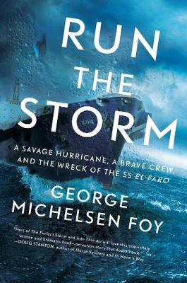 Run the Storm by George Michelsen Foy