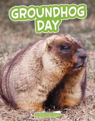 Groundhog Day by Sharon Katz Cooper