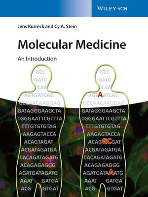 Molecular Medicine by Jens Kurreck