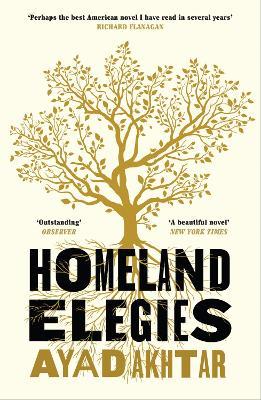Homeland Elegies: A Barack Obama Favourite Book book