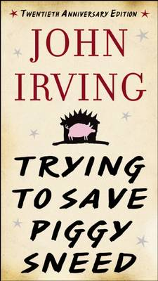 Trying to Save Piggy Sneed by John Irving