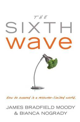 Sixth Wave book
