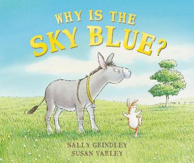 Why Is The Sky Blue? book