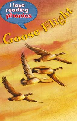I Love Reading Phonics Level 5: Goose Flight by Lucy M. George