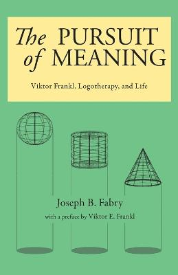 Pursuit of Meaning book