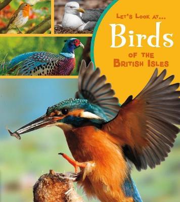 Birds of the British Isles book