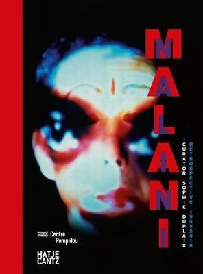 Nalini Malani by Sophie Duplaix