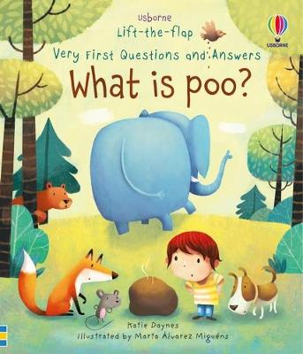 Lift-The-Flap Very First Questions & Answers: What is Poo? by Katie Daynes