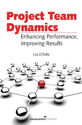 Project Team Dynamics book