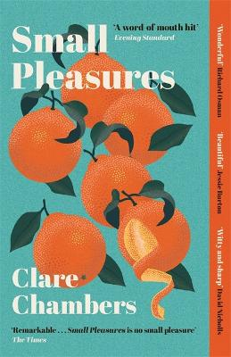 Small Pleasures: Longlisted for the Women's Prize for Fiction 2021 book