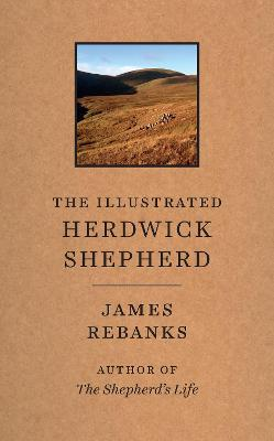 The Illustrated Herdwick Shepherd by James Rebanks