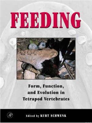 Feeding by Kurt Schwenk
