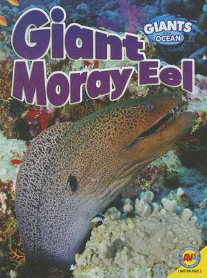 Giant Moray Eel by Anita Yasuda