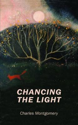 Chancing the Light by Charles Montgomery