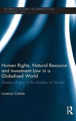 Human Rights, Natural Resource and Investment Law in a Globalised World by Lorenzo Cotula