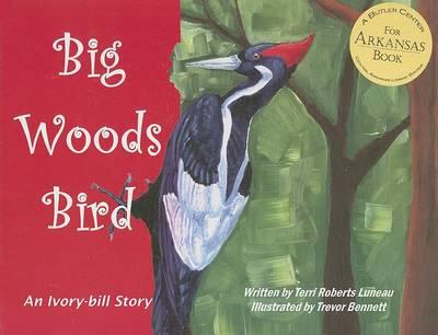 Big Woods Bird by Trevor Bennett