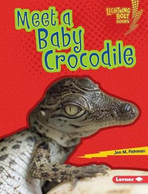 Meet a Baby Crocodile by Jon M Fishman