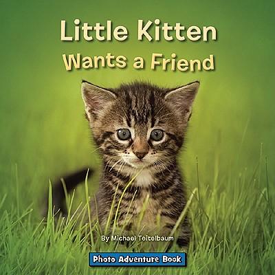 Little Kitten Wants a Friend by Prof Michael Teitelbaum