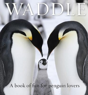 Waddle: A Book of Fun for Penguin Lovers by Lloyd Spencer Davis