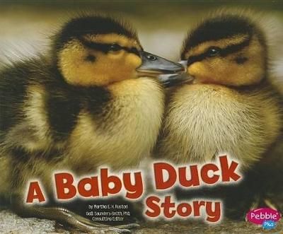 Baby Duck Story by Martha E. H. Rustad