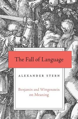 The Fall of Language: Benjamin and Wittgenstein on Meaning book