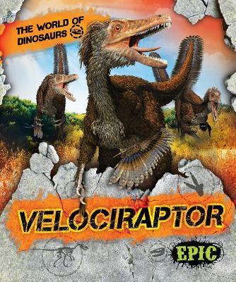 Velociraptor by Rebecca Sabelko